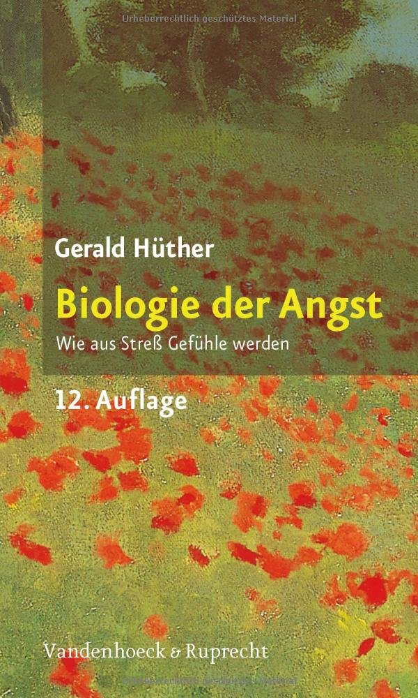 Bild ANgst Hüther